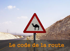 code-route-tours