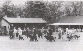 Vereinsheim und Übungsplatz in den 60ern