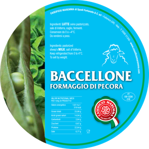 maremma sheep sheep's cheese dairy pecorino caseificio tuscany tuscan spadi follonica label italian origin milk italy fresh soft tender fragile baccellone
