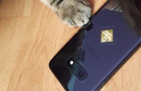 Harmony (r) Auric auf Smartphone