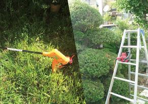 草刈り・庭の手入れ