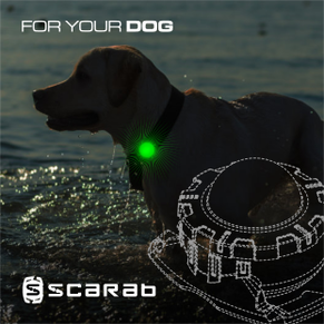 SCARAB - DOG SAFETY LIGHT