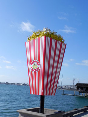 Popcorn Chicken ;-)