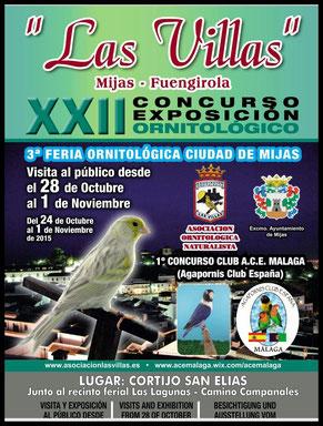 aviario miguel granada, XXII concurso exposicion ornitologico las villas, I concurso A.C.E malaga 2015