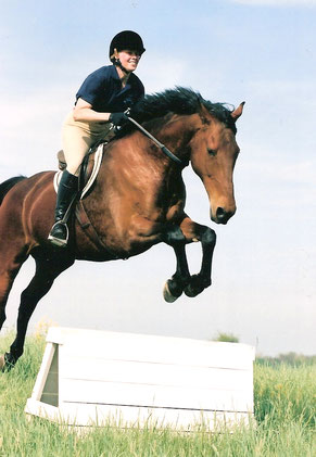 Jumping a horse without a bridle