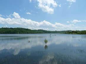 lago y pesca Bassillon-Vauzé (vic-bilh / madiran)