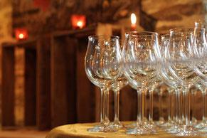 Weinprobe beim Winzer Weinverkostungen im Weinberg an der Ahr