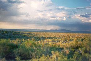 Региональный ландшафтный парк «Половецкая степь»