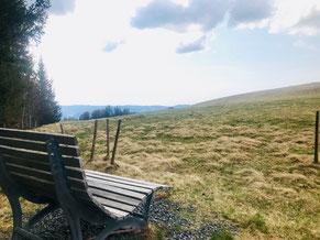 Himmelsliege auf dem Schwarzwälder Genießerpfad Bernauer Hochtalsteig