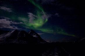 01. Februar 2015 - Nordlicht