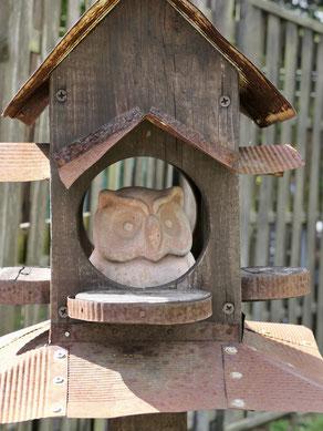 Eule im Vogelhaus