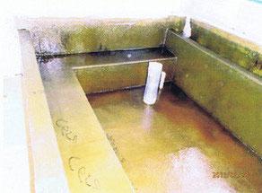 防水層 2PLY 完了