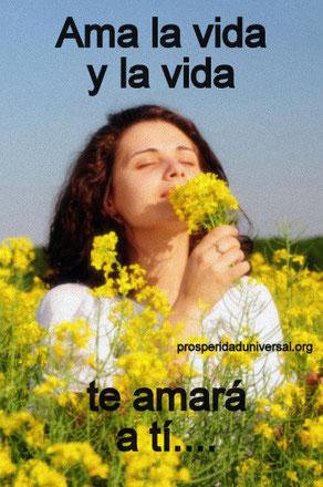 PENSAMIENTO POSITIVO - AMALA LA VIDA Y LA VIDA TE AMARÁ A TI - PROSPERIDAD UNIVERSAL