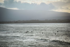 Surfspots in Irland