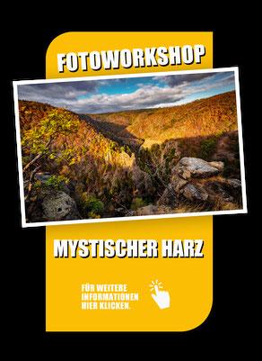 Fotoworkshop Landschaftsfotografie im Harz, mit Sebastian Kaps