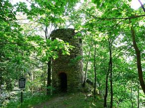 Bild: Teichler Wünschendorf Fuchsturm Erzgebirge