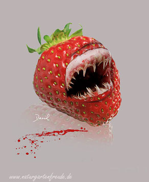 Fotomontage Erdbeere Hai Genmanipulation  photomontage shark strawberry genetic engineering