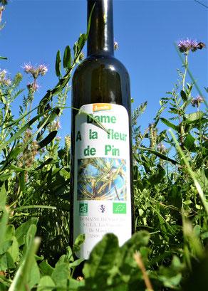 Bioarmagnac mit Pinie