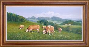 Nr.3430 weidende Kühe b. Langenbruck,BL