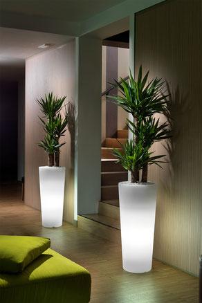 lyxo günstig kaufen vase mit LED beleuchtung