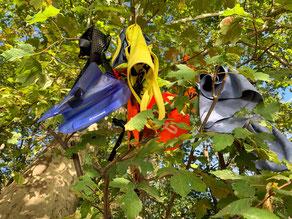 Einige Schwimmsachen hängen im Baum