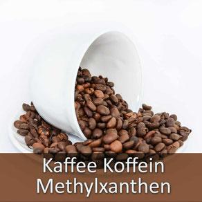 Ihr Tierarzt Dr. Birge Herkt rät: halten Sie Ihr Tier von Koffein jedweder Art fern!