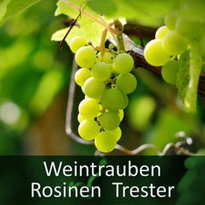Ihr Tierarzt Dr. Birge Herkt rät: halten Sie Ihr Tier von Weintrauben, Trester, Rosinen, Sultaninen fern!