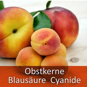 Ihr Tierarzt Dr. Birge Herkt rät: halten Sie Ihr Tier von Obstkernen fern! fern!