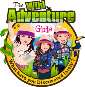 WildAdventure Girls logo