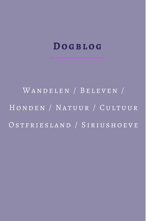 Vakantie met honden