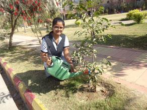 たくさんの木を植えて、ふるさとの自然を守っていきたいです