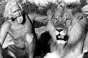 George Adamson e Christian, un leone di 3 anni (1973).
