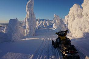 Schneemobiltour mit Ways of Lapland
