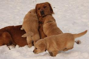 Die Kleinen lieben ihre Halbschwester Aggy