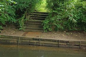 Uferverbau an der Alster