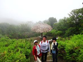 霧の中の儀兵衛山休憩所