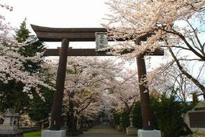 富士御室浅間神社画像
