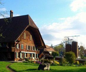 Unser Landwirtschaftsbetrieb in Bannwil - Samuel Leuenberger SVP