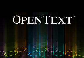 EKXEL IT Services Job Offer OpenText Solutions Architect