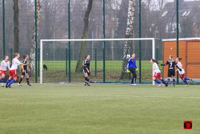 Jubel beim HSV nachdem Treffer zum 2:0.  Foto: Karsten Schulz (Torknipser)