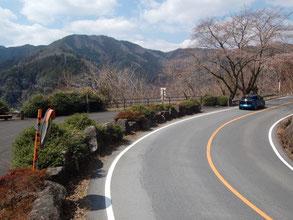 岐阜県側の県道20。桜や紅葉の時期だと最高にきれい