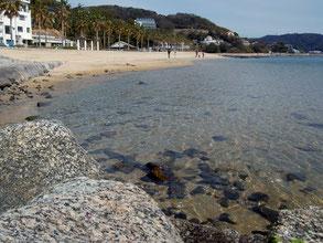 今の時期、宮崎海水浴場の水質もけっこう良い感じ