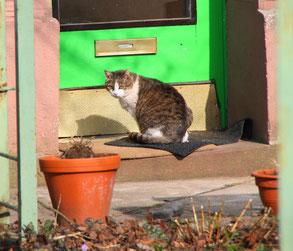 Kilian bei uns vor der Tür 18.03.10