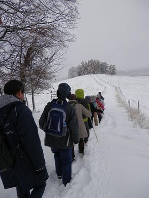牧場管理道路も雪で埋まっています。