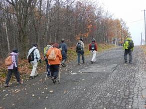 林道を散策中の参加者