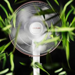 Toda la gama de ventiladores de pie Forcesilence en la tienda online de Ana Oliveres
