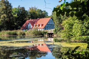 Nachbarschaft: Restaurants und Hotels, Fürst Bismarck Mühle, teamevent.de