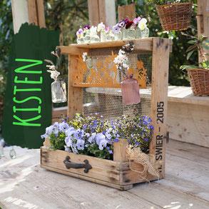 """Rustikale Drahtkiste mit Dekoration in Grüntönen wie Flaschen, Einmachgläsern und einem Froschkönig. Foto trägt die Aufschrift """"Kisten""""."""