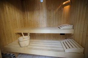 Sauna im Ferienhaus Zeeduin