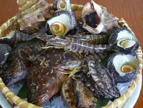 毎日水揚げされる新鮮な瀬戸内の魚介類